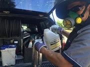 Possum Pest Control Sydney